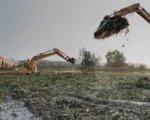 Excavadoras trabajando en la recogida del Camalote
