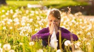 Según el estudio, los nacidos en otoño en invierno tienen más probabilidades de sufrir alergia primaveral
