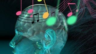 La música en el cerebro.