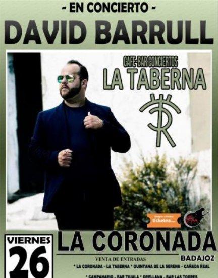 David Barrul en concierto