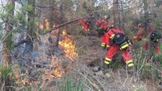 Aquí se ve como los bomberos están apagando el fuego.
