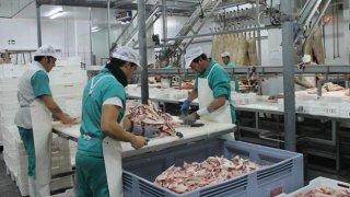 Sala de despiece de Montesano en sus instalaciones en Jerez de los Caballeros. :: / HOY