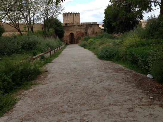 Descuidos en la Alcazaba de Badajoz