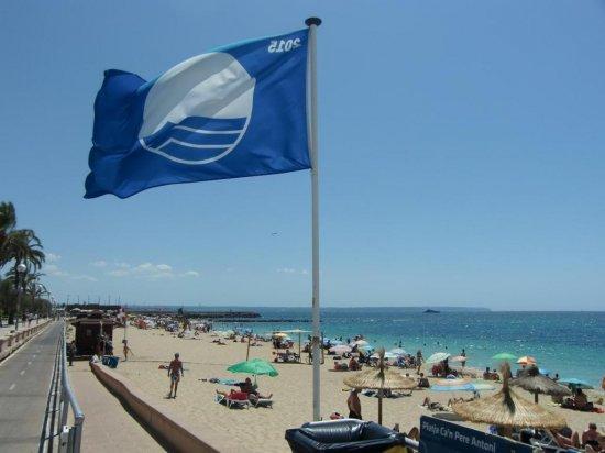 Requisitos para  que  una playa opte a ser distinguida con la bandera azul