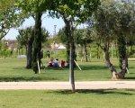 Personas comiendo a la sombra, cerca del río. Javier Píriz.